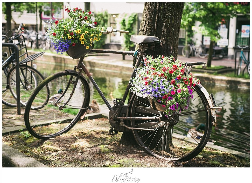 Beautiful bike with flowers parked alongside a canal in beautiful Delft.