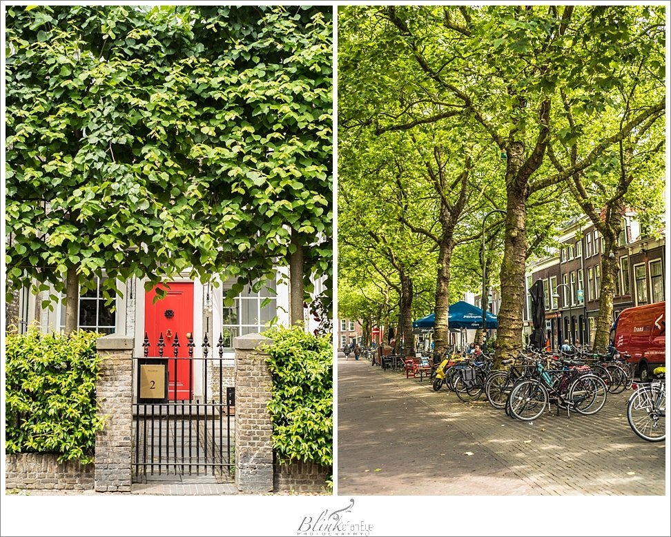 Beautiful red door framed by ivy in Delft.